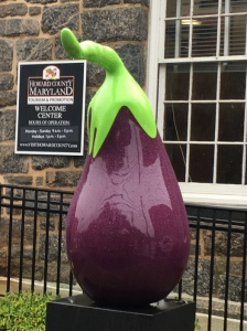 New Eggplant close up-6